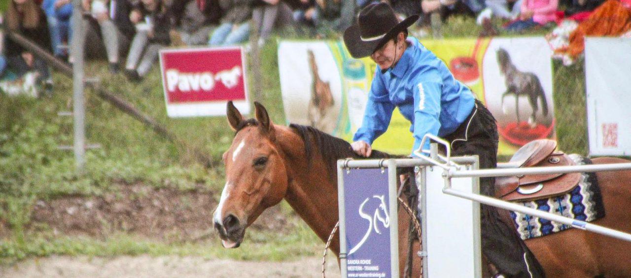 Sandra Rohde Western Training